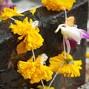Flower offering at Sri Marianman Hindu Temple, Singapore