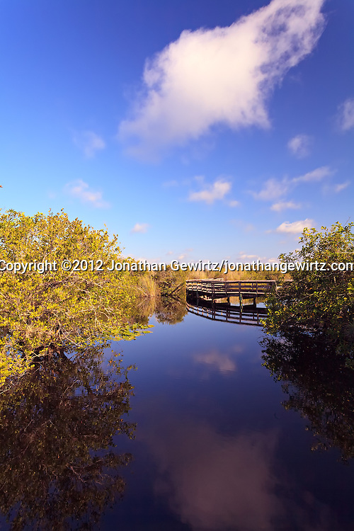 A view of part of the Anhinga Trail's elevated boardwalk over Taylor Slough in Everglades National Park, Florida. WATERMARKS WILL NOT APPEAR ON PRINTS OR LICENSED IMAGES.