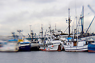 slective focus image of commercial fishing boats at fishermans wharf in Ballard, Seattle, Washington