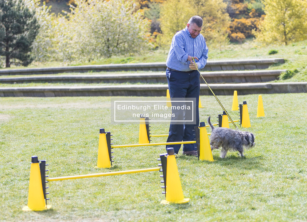 MSPs display their dogs and put them through an agility course with the winner decided by a public vote on the day.<br /> <br /> Pictured: Jeremy Balfour Dogs Trust dog Fudge marks its territory on one of the cones