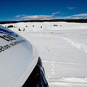 Clients watch a red fox catching dinner in the Hayden Valley during winter in Yellowstone.