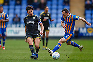 Wimbledon defender Will Nightingale (5) in action  during the EFL Sky Bet League 1 match between Shrewsbury Town and AFC Wimbledon at Greenhous Meadow, Shrewsbury, England on 2 March 2019.
