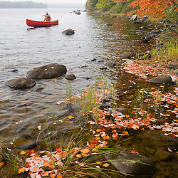 A man paddles his canoe on Seboeis Lake near Millinocket, Maine.  Fall. (MR)