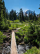 Spray Park in mid August, Mount Rainier National Park, Washington, USA. This photo was stitched from 2 overlapping images.