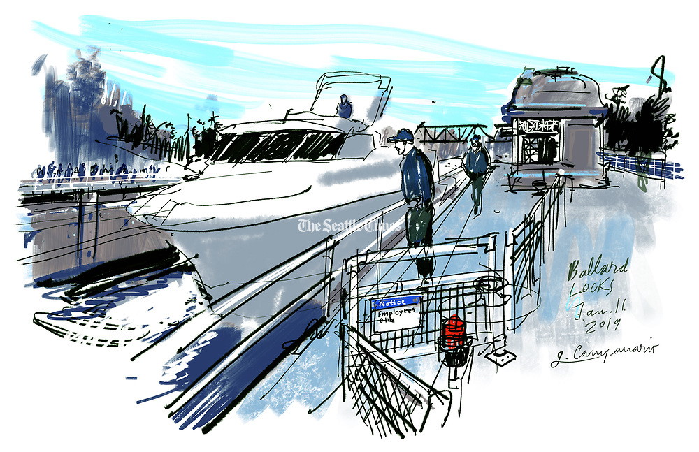 As I sketched this yacht heading toward Salmon Bay, some bystanders wondered when the next boat would come through. Busy or not, the boat activity at the locks is mesmerizing to watch. (Gabriel Campanario / The Seattle Times)