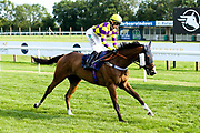 """Contingency Fee ridden by Grace McEntee trained by Phil McEntee in the """"""""Hands and Heels"""""""" Apprentice Handicap - Mandatory by-line: Robbie Stephenson/JMP - 27/08/2019 - PR - Bath Racecourse - Bath, England - Race Meeting at Bath Racecourse"""