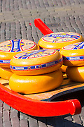 Display of wheels of Beemster aged gourmet Gouda cheese at Alkmaar cheese market, The Netherlands