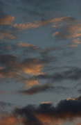 Evening sky, summer<br /> *ADD TO CART FOR LICENSING OPTIONS*