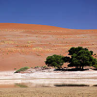 Africa, Namibia, Sossusvlei. Sossusvlei Pan, with some water.