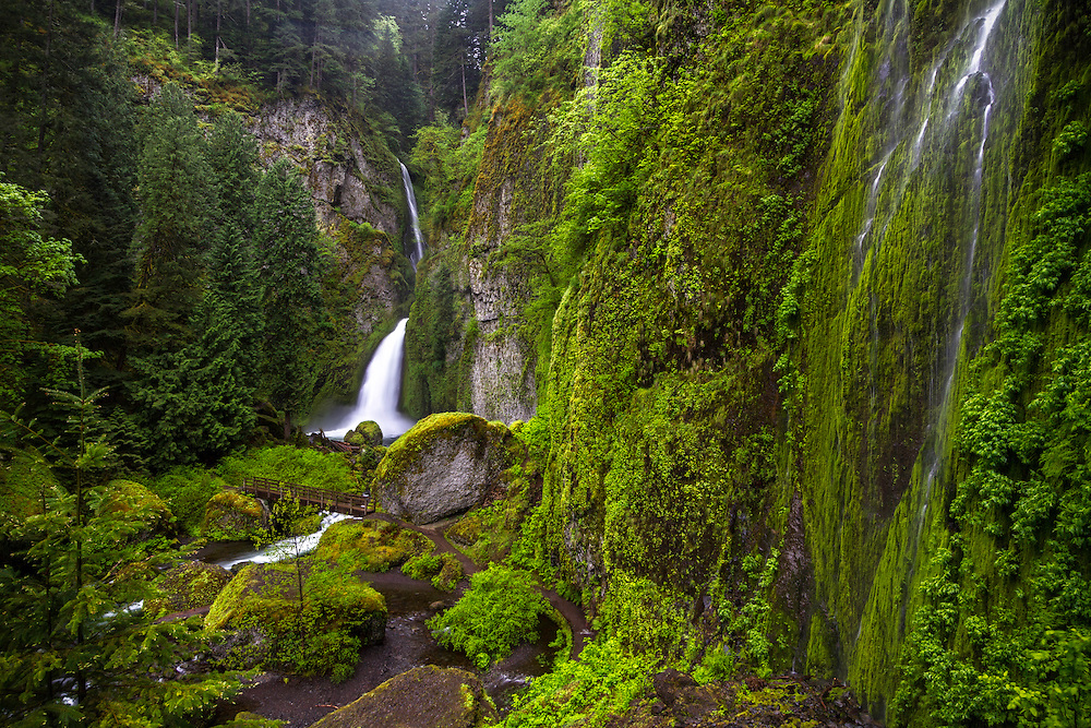 The upper vantage point of Wahclella Falls in the Columbia River Gorge gives you a vast overlook of the powerful waterfall and fern covered canyon walls.