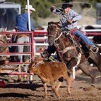 070214       Cable Hoover<br /> <br /> Homer Sanders chases his calf out of the chute in the tie-down roping of the Senior Pro Rodeo at the Grants Rodeo Grounds Wednesday.