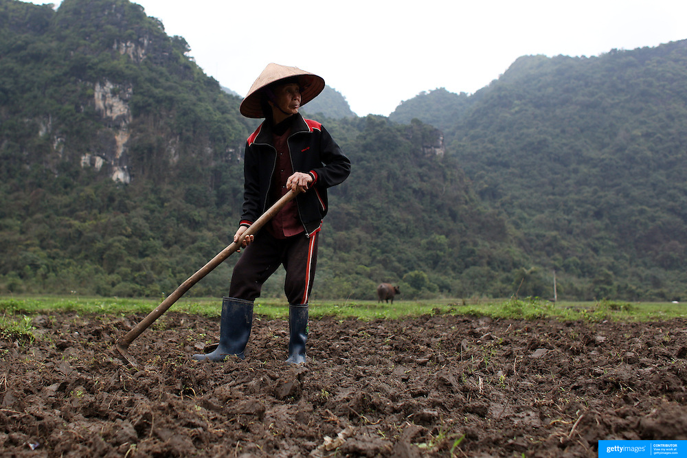An elderly women prepares a field for crops on Cat Ba Island, the largest island in Ha Long Bay, Vietnam. The bay consists of a dense cluster of 1,969 limestone monolithic islands. Ha Long Bay, is a UNESCO World Heritage Site, and a popular tourist destination. Ha Long, Bay, Vietnam. 11th March 2012. Photo Tim Clayton