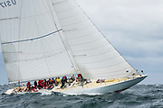 Weatherly sailing in the Opera House Cup.