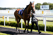 Lehwaiyla ridden by David Probert trained by Sir Michael Stoute - Mandatory by-line: Robbie Stephenson/JMP - 22/07/2020 - HORSE RACING - Bath Racecoure - Bath, England - Bath Races