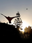 Pictures taken at the 2012 Festival of the Winds , at Bondi Beach , sydney Australia.The Festival of the Winds is one of the largest kite flying festivals in Australia dating back to 1978, according to the Australian Kiteflyers Society, and attracts both local and international kite-makers, flyers and enthusiasts.<br /> It is held at Australia's Iconic Bondi Beach in October and is  Australia's premiere kite event, a colorful spectacle attracting some 50,000 spectators and hundreds of kite-makers featuring Delta and Free Form kites from the Australian Kiteflyers Society members as well as International kite flyers and their designs from countries including India, Malaysia, China and Japan.