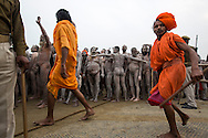 A group of Naga Sadhu (naked holy men) have just bathed in the Ganga and are in a procession through a crowd of millions. They are being protected by the men in orange. These Sadhu are solely dedicated to achieving liberation, the fourth and final stage of life, through meditation and contemplation. Kumbh mela