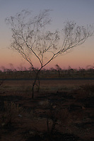 sunset in the outback, Western Australia