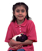 Young Girl holding Pet Guinea Pig, aged 7 years old, domestic, white background, cut out, studio, multi black, white and tan colour