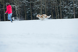Young woman running with her dog in snowy landscape, Bavaria, Germany