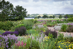View over the organic gravel garden at Holt Farm