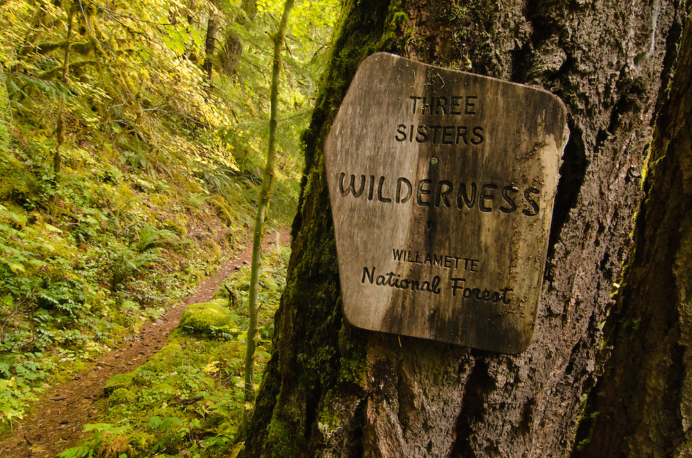 Three Sisters Wilderness sign along French Pete Creek Trail in Oregon's Cascade Range.