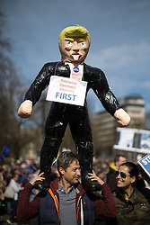 © Licensed to London News Pictures . 25/03/2017 . London , UK . A man with an effigy of Donald Trump . A Unite for Europe anti Brexit march through central London , from Park Lane to Westminster . Protesters are campaigning ahead of the British government triggering Article 50 of the Lisbon Treaty which will initiate Britain's withdrawal from the European Union . Photo credit : Joel Goodman/LNP