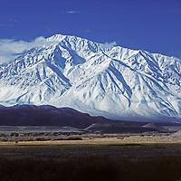 13,652-foot Mount Tom towers 9000 feet above California's Owens Valley, below the eastern Sierra Nevada.