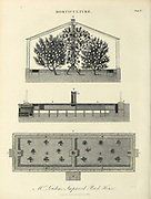 Horticulture - improved Greenhouses Copperplate engraving From the Encyclopaedia Londinensis or, Universal dictionary of arts, sciences, and literature; Volume X;  Edited by Wilkes, John. Published in London in 1811