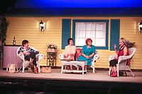 Walpole Footlighters in Walpole MA presents The Savannah Sipping Society Fall 2017. Photo taken on 10-15-17 dress rehearsal