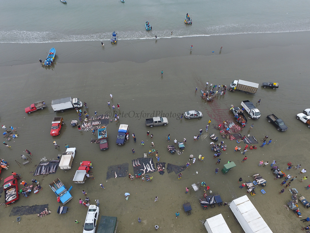 Fishermen on Beach<br /> Tarqui<br /> Manta<br /> Manabi Province<br /> Ecuador<br /> South America