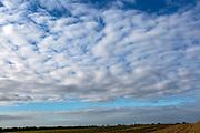 Mackerel sky cloud formation above landscape in Suffolk Sandlings AONB, England, UK