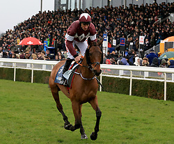Folsom Blue ridden by Davy Russell during the Marstons 61 Deep Midlands Grand National race at Uttoxeter Racecourse.