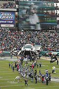 16 Jan 2005:Donavan McNabb of the Philadelphia Eagles during the Philadelphia Eagles 27-14 victory over the Minnesota Vikings at Lincoln Financial Field in Philadelphia, PA. <br /> <br /> Mandatory Credit:Todd Bauders/ContrastPhotography.com