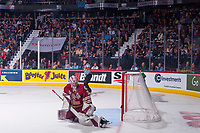 REGINA, SK - MAY 27:  Evan Fitzpatrick #31 of Acadie-Bathurst Titan makes a save against the Regina Pats at Brandt Centre - Evraz Place on May 27, 2018 in Regina, Canada. (Photo by Marissa Baecker/CHL Images)