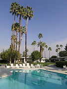 pool with palm trees Palm spring USA