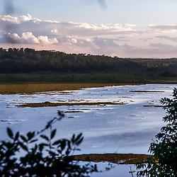 """""""Lagoa do Macuco (paisagem) fotografado em Linhares e Sooretama, Espírito Santo -  Sudeste do Brasil. Bioma Mata Atlântica. Registro feito em 2014.<br /> <br /> <br /> <br /> ENGLISH: Macuco Lagoon photographed in Linhares and Sooretama, Espírito Santo - Southeast of Brazil. Atlantic Forest Biome. Picture made in 2014."""""""