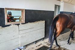 Da cocheira ao disco de chegada, os bastidores do Grande Prêmio Bento Gonçalves 2015, a prova máxima brasileira para cavalos da raça Puro Sangue Inglês de corrida (thoroughbred) disputada em pista de areia.  FOTO: Jefferson Bernardes/ Agência Preview