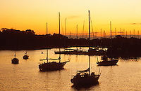 "Annapolis, Maryland--  Sailboats mored on Spa Creek at sunset enjoy safe harbor from the winds of the Chesapeake Bay. Annapolis, with its close proximity to the bay is known as the ""Sailing Capital of the World""."