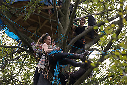 A tree protector climbs towards a tree house about sixty feet above ground at a wildlife protection camp in ancient woodland at Jones' Hill Wood on 5 October 2020 in Aylesbury Vale, United Kingdom. The Jones' Hill Wood camp, one of several protest camps set up by anti-HS2 activists along the route of the £106bn HS2 high-speed rail link in order to resist the controversial infrastructure project, is currently being evicted by National Eviction Team bailiffs working on behalf of HS2 Ltd.