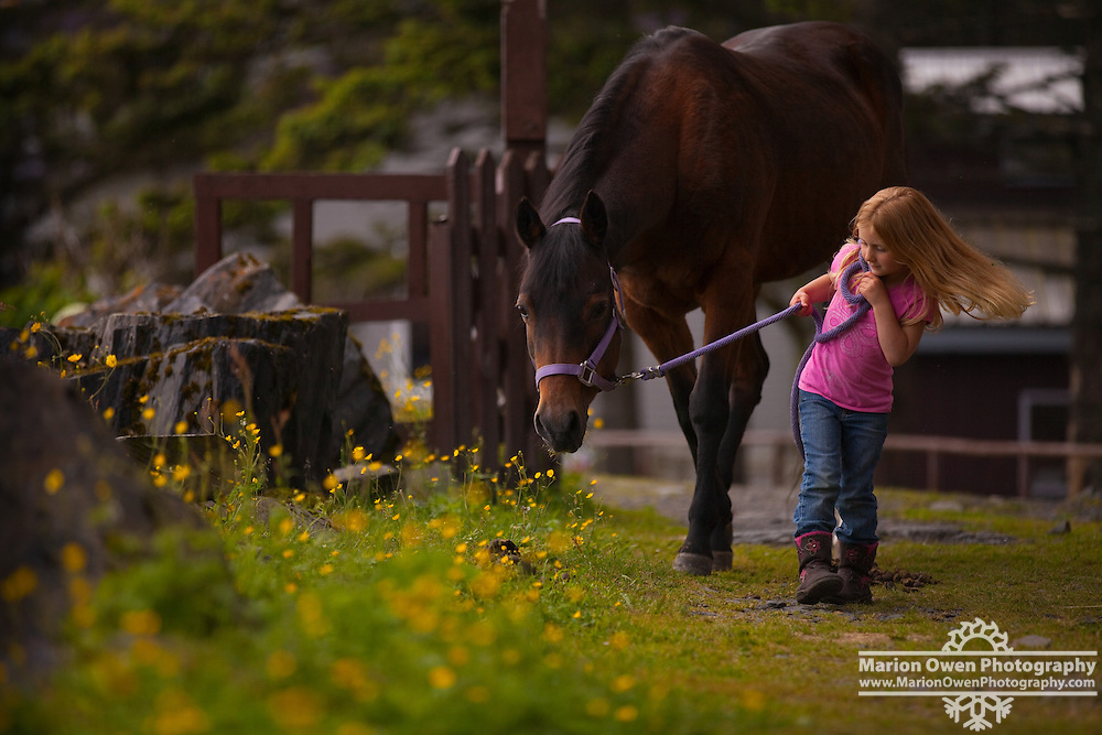 Young girl walking with a horse on a grassy path, Kodiak, Alaska.