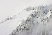 Trees are shrouded in low clouds and heavy snow on a ridge above Boulder Lake, Glacier Peak Wilderness, Washington.