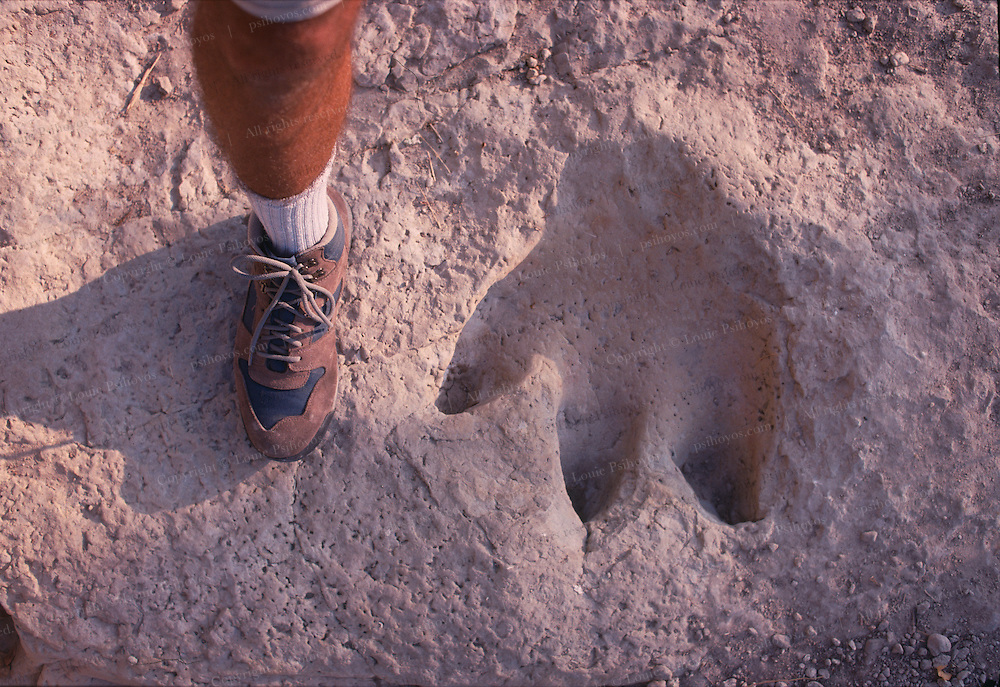 A Therapod track from Glen Rose Texas.