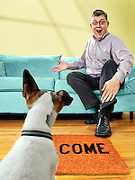 JON M. FLETCHER/The Times-Union -- 080309 -- Pet-friendly furniture illustration.  (The Florida Times-Union, Jon M. Fletcher)