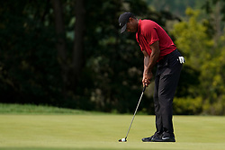 August 12, 2018 - St. Louis, Missouri, United States - Tiger Woods putts the 9th green during the final round of the 100th PGA Championship at Bellerive Country Club. (Credit Image: © Debby Wong via ZUMA Wire)