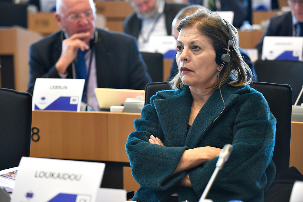 12 May 2017, 123rd Plenary Session of the European Committee of the Regions <br /> Belgium - Brussels - May 2017 <br /> <br /> LOUKAIDOU Eleni