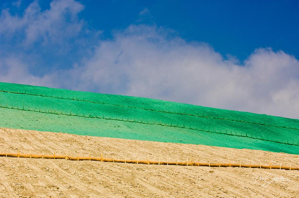 Vale Inco slag pile re-greening project- Phase 2- Revegetated slopes, Sudbury, Ontario, Canada