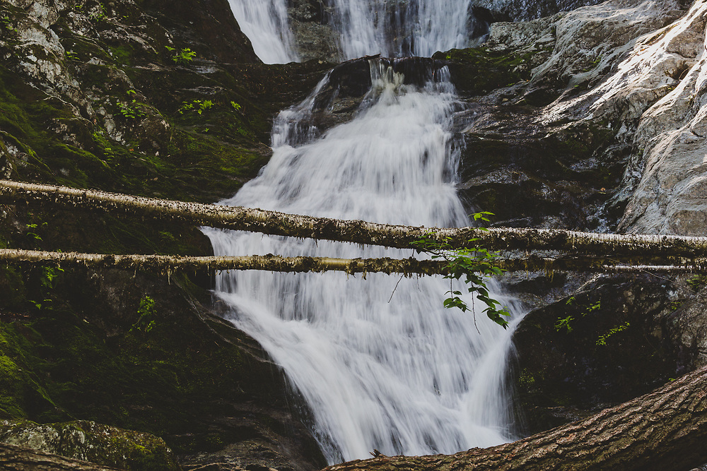 A fallen birch spanning the middle section of Tannery Falls.