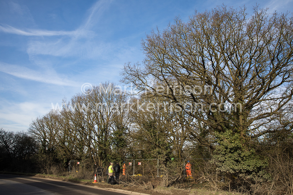 Harefield, UK. 7 February, 2020. HS2 engineers erect Heras fencing to surround three environmental activists from Extinction Rebellion who have climbed a veteran oak tree close to the Harvil Road wildlife protection camp in order to try to protect it from felling. HS2 are expected to try to fell large numbers of mature trees in the immediate vicinity over the weekend even though the high-speed rail link is still awaiting Boris Johnson's approval.