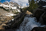 A stream in Glacier Basin, Mount Baker-Snoqualmie National Forest, Washington.