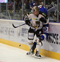 Ishockey , 15. september 2016 , Eliteserien , Get-ligaen , Stavanger Oilers - Sparta<br />Eirik Østrem Salsten of Stavanger Oilers in action v Sparta. Foto: Andrew Halseid Budd , Digitalsport